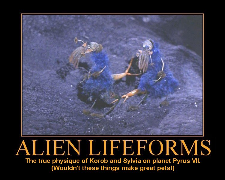 life on other planets form - photo #2