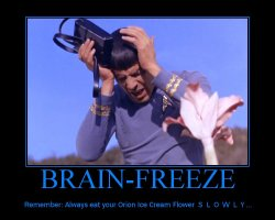 Brain Freeze --- Remember: Always eat your Orion Ice Cream Flower S-L-O-W-L-Y...