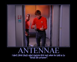 Antennae --- I don't think that's what Captain Kirk met when he told us to break the prisoner.