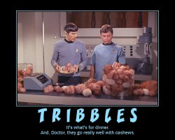 Tribbles --- It's what's for dinner. And, Doctor, they go really well with cashews.