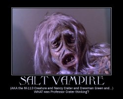 Salt Vampire --- (AKA the M-113 Creature and Nancy Crater and Crewman Green and...) WHAT was Professor Crater thinking?