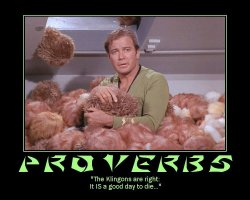 Proverbs --- 'The Klingons are right: It IS a good day to die...'