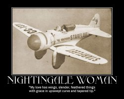 Nightingale Woman --- 'My love has wings, slender, feathered things with grace in upswept curve and tapered tip.'