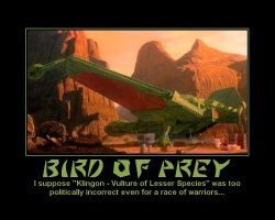 Bird of Prey --- I suppose 'Klingon - Vulture of Lesser Species' was too politically incorrect even for a race of warriors...